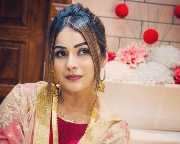 Shehnaz Kaur Gill wiki